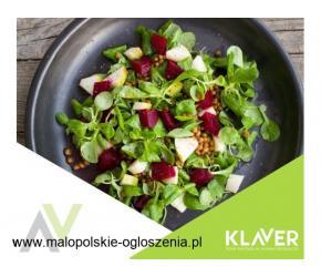 Produkcja sałatek obiadowych - Holandia !!