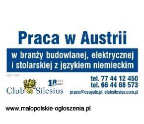 Cieśla szalunkowy- umowa austriacka, 13 i 14 wypłata, diety